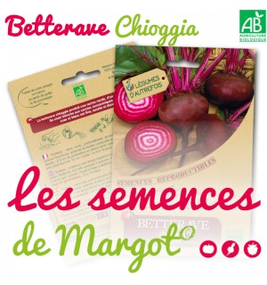 Betterave CHIOGGIA