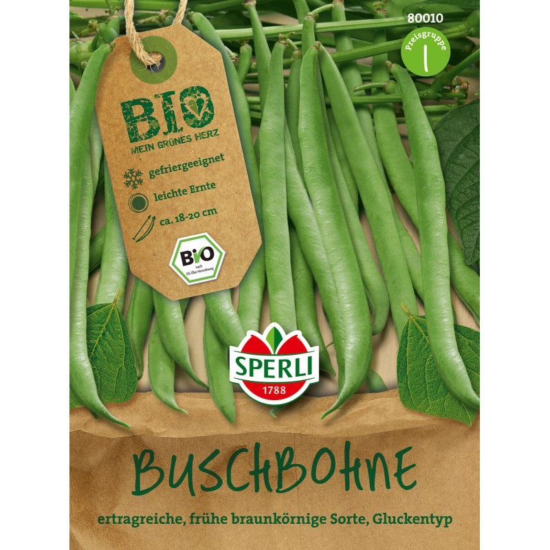 Haricots verts buisson – Maxi 46gr.